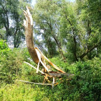 Po búrke – rameno Horný Čepeň